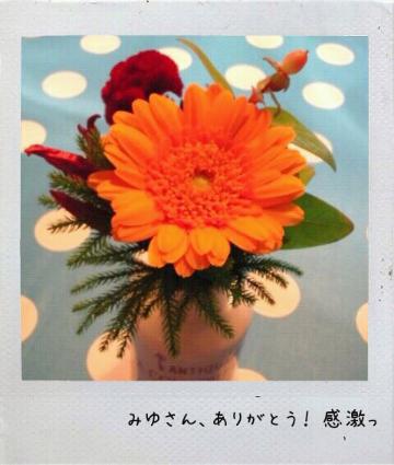 20111024151147.jpg