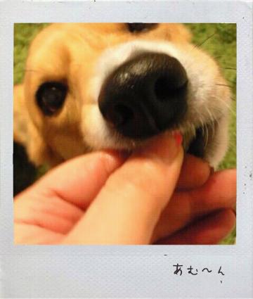 201212417423_1.jpg