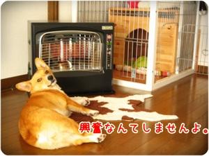 Heater_kao