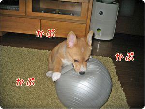Ball_10_2