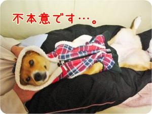 Osaagari_ue_3