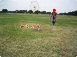 Camera3_2