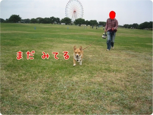 Camera4_2