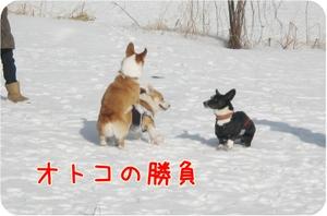 Karuizawa131cyucyukuntorikukun