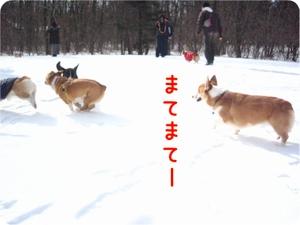 Karuizawa131kakekko