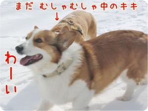 Karuizawa131wai