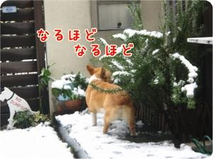 Yuki202turu2_2