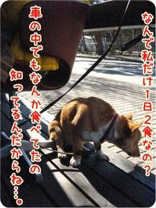 Karuizawa130kawakamiankiki2