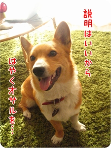 Kikimadagasuimg_4121