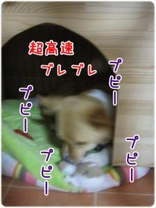 35img_0412_2